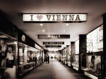 Amo Viena Imagen de archivo libre de regalías