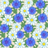 Сamomiles and cornflowers seamless pattern Royalty Free Stock Photography