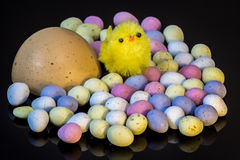 Amongst the eggs. Toy chick in a sea of eggs, ready for Easter Stock Photography