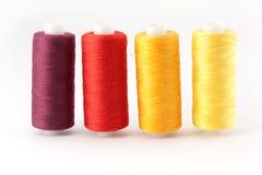 Amorçage coloré par quatre Image stock