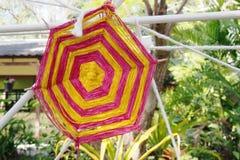 Amorçage en soie coloré Image stock