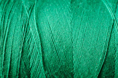 Amorçage vert Images stock