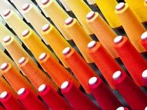 Amorçages de cône Photographie stock libre de droits