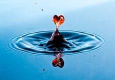 Amor Imagem de Stock Royalty Free