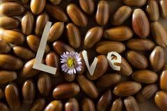 Amor. Imágenes de archivo libres de regalías