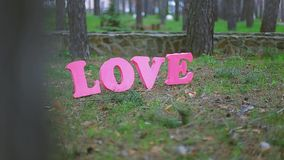 Amor almacen de metraje de vídeo