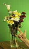 Amor & flores Imagens de Stock