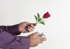 Amor ardiente Imagen de archivo