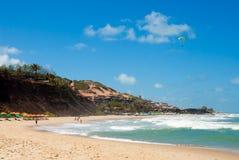amor Brazil robi praia Fotografia Stock