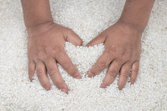 Amor com arroz Imagens de Stock