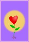 Amor crescente Fotografia de Stock Royalty Free