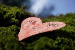 Amor cubierto de musgo Fotos de archivo libres de regalías