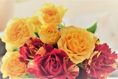 Amor Día del `s de la tarjeta del día de San Valentín Fotos de archivo libres de regalías