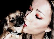 Amor da chihuahua Fotografia de Stock Royalty Free