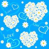 Amor da flor Foto de Stock