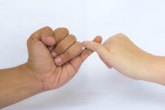 Amor da mão Imagem de Stock