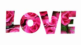 Amor da palavra isolado no fundo branco Foto de Stock Royalty Free