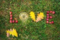 Amor da palavra no fundo da grama verde Imagens de Stock Royalty Free