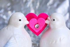 Amor da pomba imagem de stock