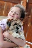 Amor de filhote de cachorro Imagem de Stock