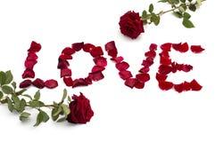 Amor de la inscripción de los pétalos de rosas, y dos rosas desde arriba Foto de archivo libre de regalías