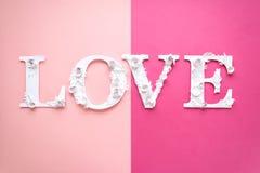 Amor de la inscripción de la foto hecho de hojas y de flores en fondo rosado Fotos de archivo