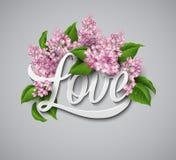 Amor de la palabra con las flores Ilustración del vector ilustración del vector
