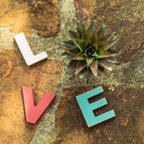 Amor de la palabra en el piso de piedra Fotos de archivo