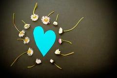 Amor de la primavera Fotografía de archivo