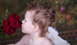Amor de la tarjeta del día de San Valentín Imágenes de archivo libres de regalías