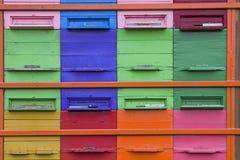 Amor de las abejas colorido Foto de archivo libre de regalías