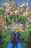 AMOR de las palabras en fondo del otoño Imágenes de archivo libres de regalías