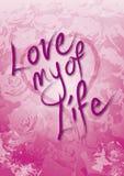 Amor de las tarjetas del día de San Valentín de mi vida fotos de archivo
