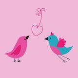 Amor de los pájaros Imagenes de archivo