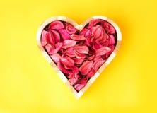 Amor de Rose Foto de archivo