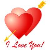 Amor de Whith para você!! Imagem de Stock Royalty Free
