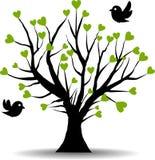 Amor del árbol con los corazones verdes Imagen de archivo libre de regalías