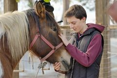 Amor del adolescente un caballo Foto de archivo libre de regalías