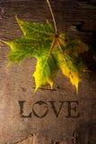 Amor del concepto. Fotos de archivo