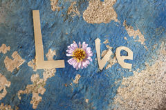 Amor del concepto. Fotografía de archivo libre de regalías