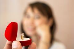 Amor del concepto de Valentine Marry Foto de archivo libre de regalías
