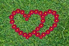 Amor del corazón Fotografía de archivo libre de regalías