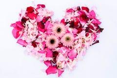 Amor del corazón de la flor Imagenes de archivo