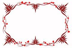Amor del corazón del alcance Imagen de archivo