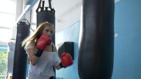 Amor del deporte, boxeador de sexo femenino en guantes que entrena con el saco de arena en estudio de la aptitud metrajes