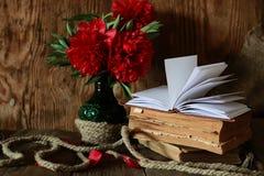 Amor del libro viejo y de la palabra Foto de archivo