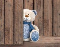 Amor del oso Foto de archivo