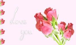Amor del texto usted en una tarjeta de felicitación Foto de archivo libre de regalías