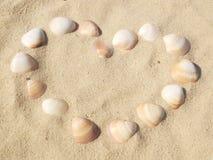 Amor del verano Imagen de archivo