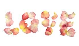 Amor deletreado hacia fuera en pétalos color de rosa Imagen de archivo libre de regalías